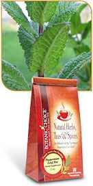 Peppermint Leaf 2 oz cut leaf