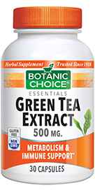 Green Tea Extract 500 mg 30 capsules