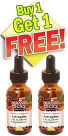 Astragalus Root Liquid Extract - Buy 1 Bottle, Get 1 Free 1 oz per bottle