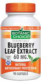 Blueberry Leaf Extract 90 softgelsnohtin