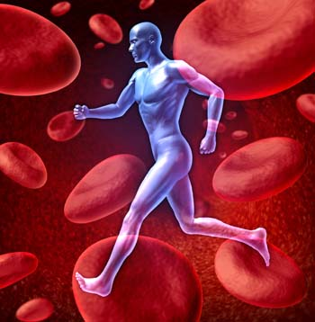 tips for healthy blood circulation