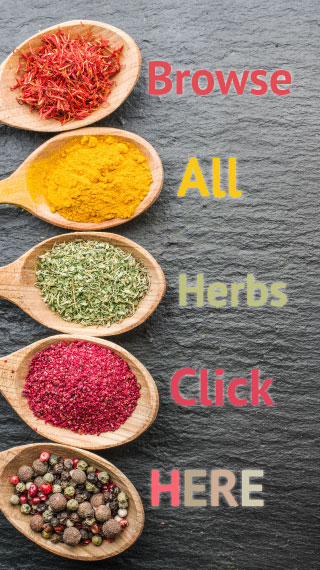 browse all herbs click here