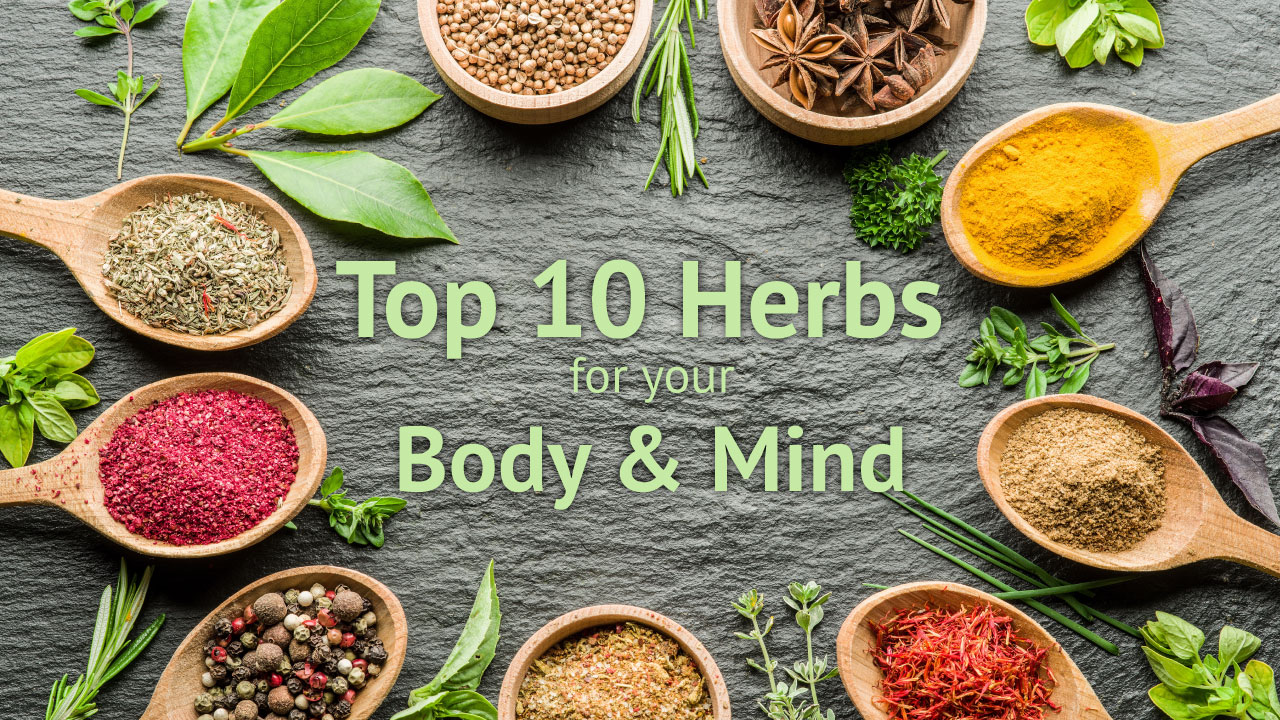 top 10 herbs for botanic choice