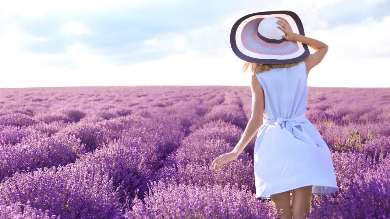 woman in sun hat and field of lavender