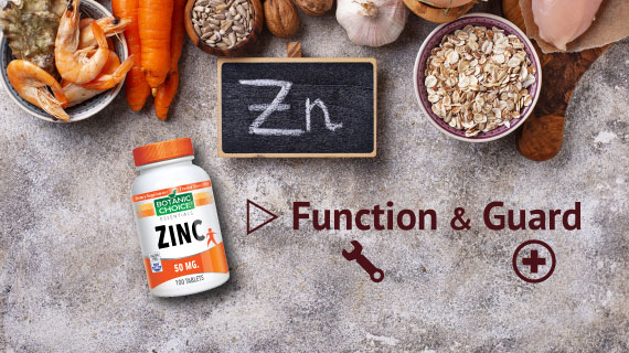 foods with zinc function and guard
