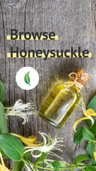 Browse Honeysuckle