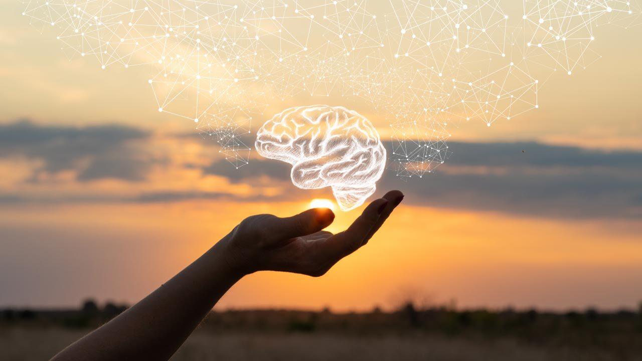 Brain Ingredients to Blow Your Mind