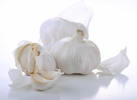 Garlic herbal supplements