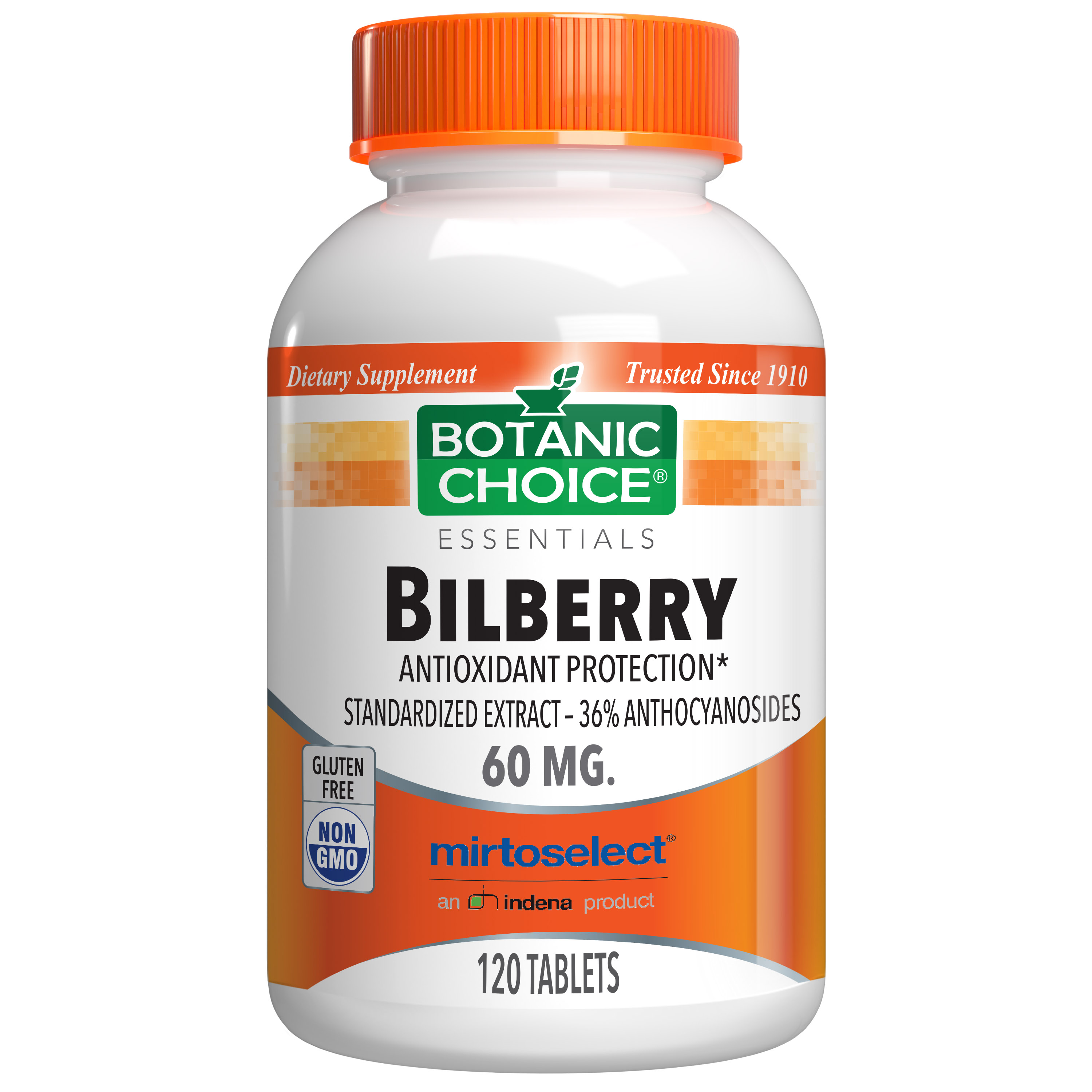Botanic Choice Bilberry Extract Standardized for 36% Anthocyanosides - 120 Tablets