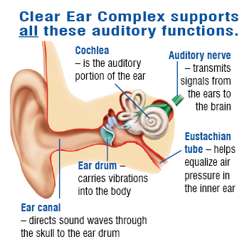 Clear Ear Complex for Hearing Support