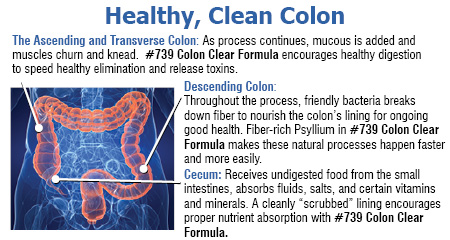 Buy 739 Colon Clear Formula 90 capsules Botanic Choice